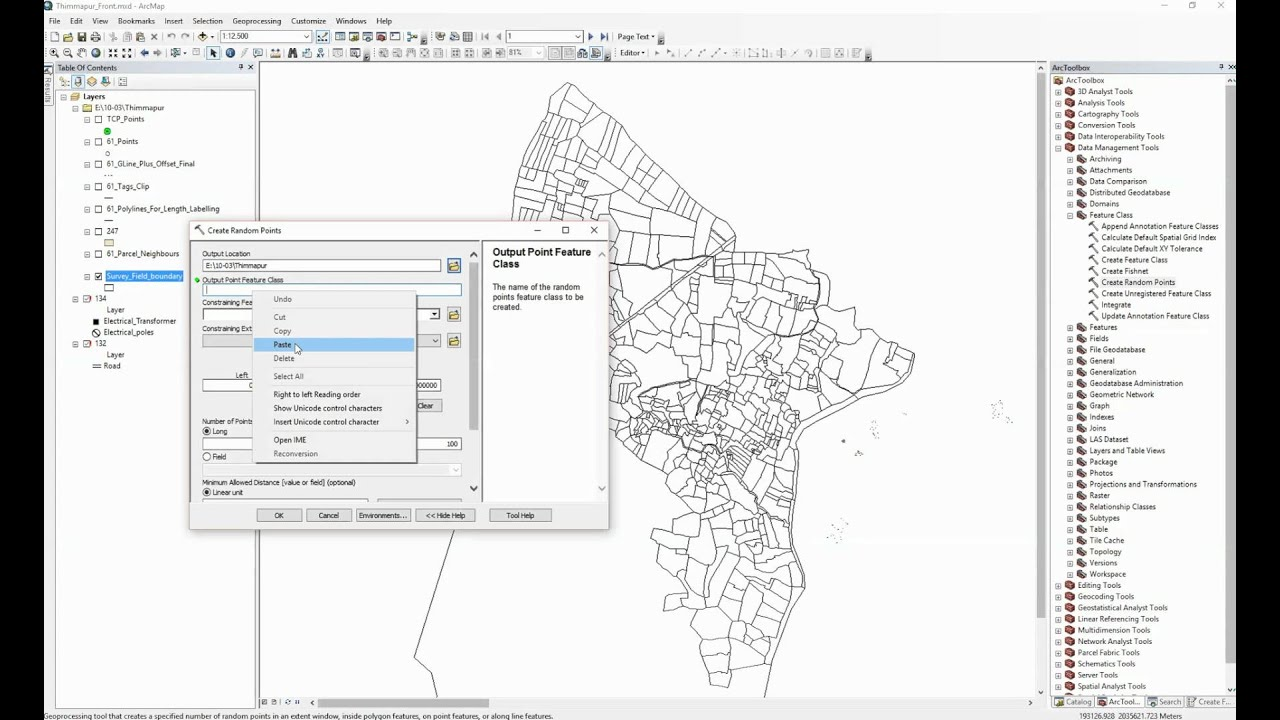 ArcGIS 10 2 - Create Random Points - create single or multiple points for  each polygon