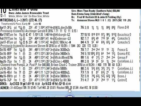 How To Read the Racing Form- Past Performances Horse Racing Tips - racing form