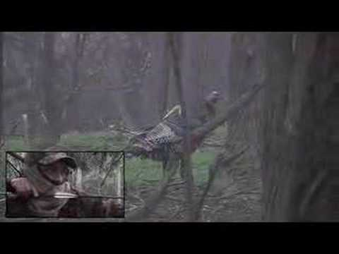 Turkey Hunting - Nonstop Hunting Teaser Show 9