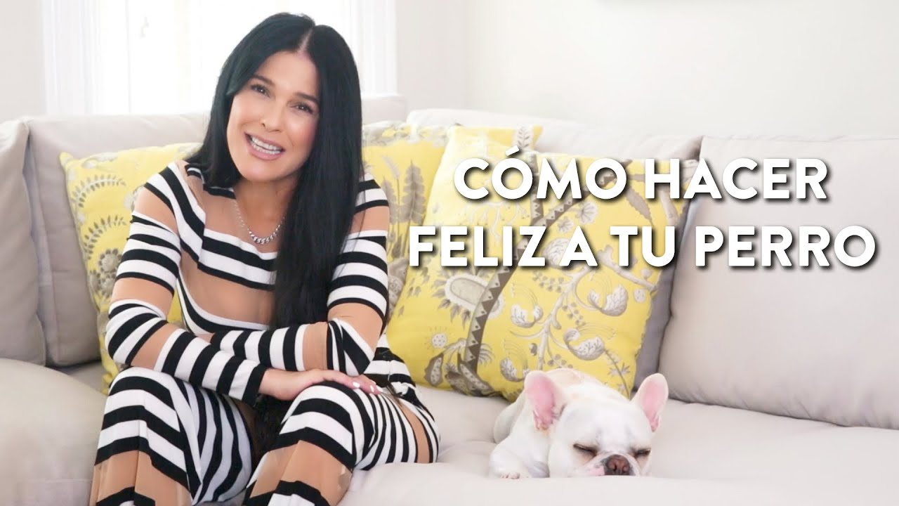 Cómo hacer feliz a tu perro | Martha Debayle