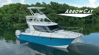Experience the ArrowCat 320