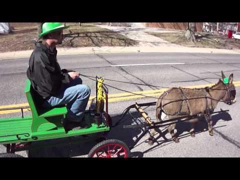 Dinky the Donkey Snake Saturday Parade Gypsy Park LLC 2012