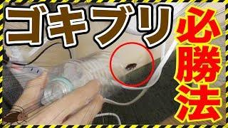 我が家にゴキブリが出現してしまいました... ゴキブリvs人類 北の打ち師...