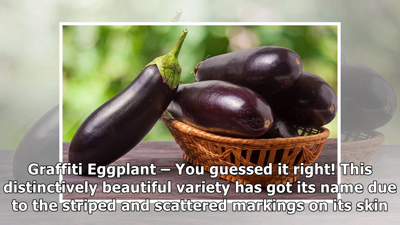 35 Amazing Benefits Of EggplantBrinjal For Skin, Hair, And Health