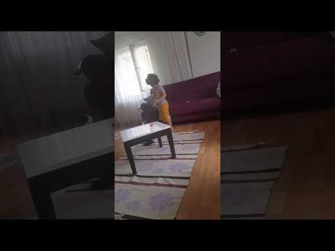 kedi keremin donunu indirdi 18