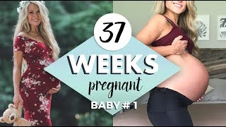 37 WEEKS PREGNANT // Scheduled C Section!!! Maternity Photoshoot, Breech Position Ultrasound