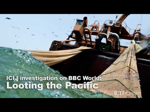 Looting the Pacific: ICIJ investigation on BBC World News