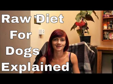 Raw Feeding/ BARF For Your Dog - Introduction By A Neapolitan Mastiff Owner