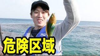 一日に1時間しか現れない危険区域で危険すぎる魚きた!! thumbnail
