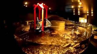 さけのふるさと千歳水族館 3軸スタビライザーテスト