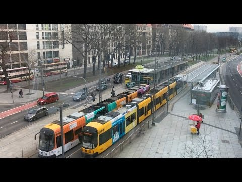 Dresden, tram, crocuses and coffee / Germany, 11.03.2017 / Part: 2/4
