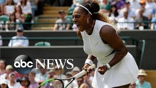 Lion cub, Women's World Cup and Wimbledon: World in Photos, July 8