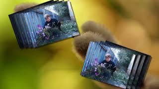 Родная Жадовка, слова, музыка, исполнение и автор ролика Николай Ильин.