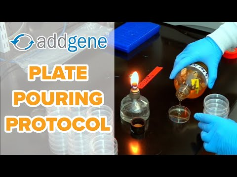 Plate Pouring Protocol