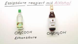 ESSIGSÄURE REAGIERT MIT ALKOHOL | Chemie | Organische Verbindungen – Eigenschaften und Reaktionen