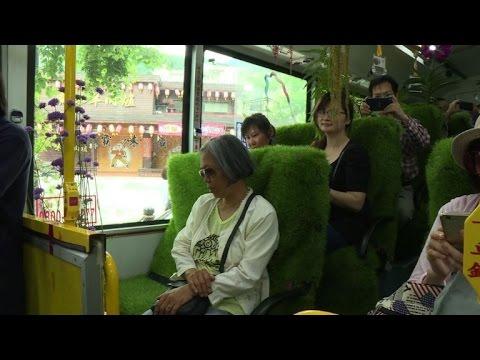 """Taïwan: un bus """"forêt"""" séduit les passagers de Taipei"""