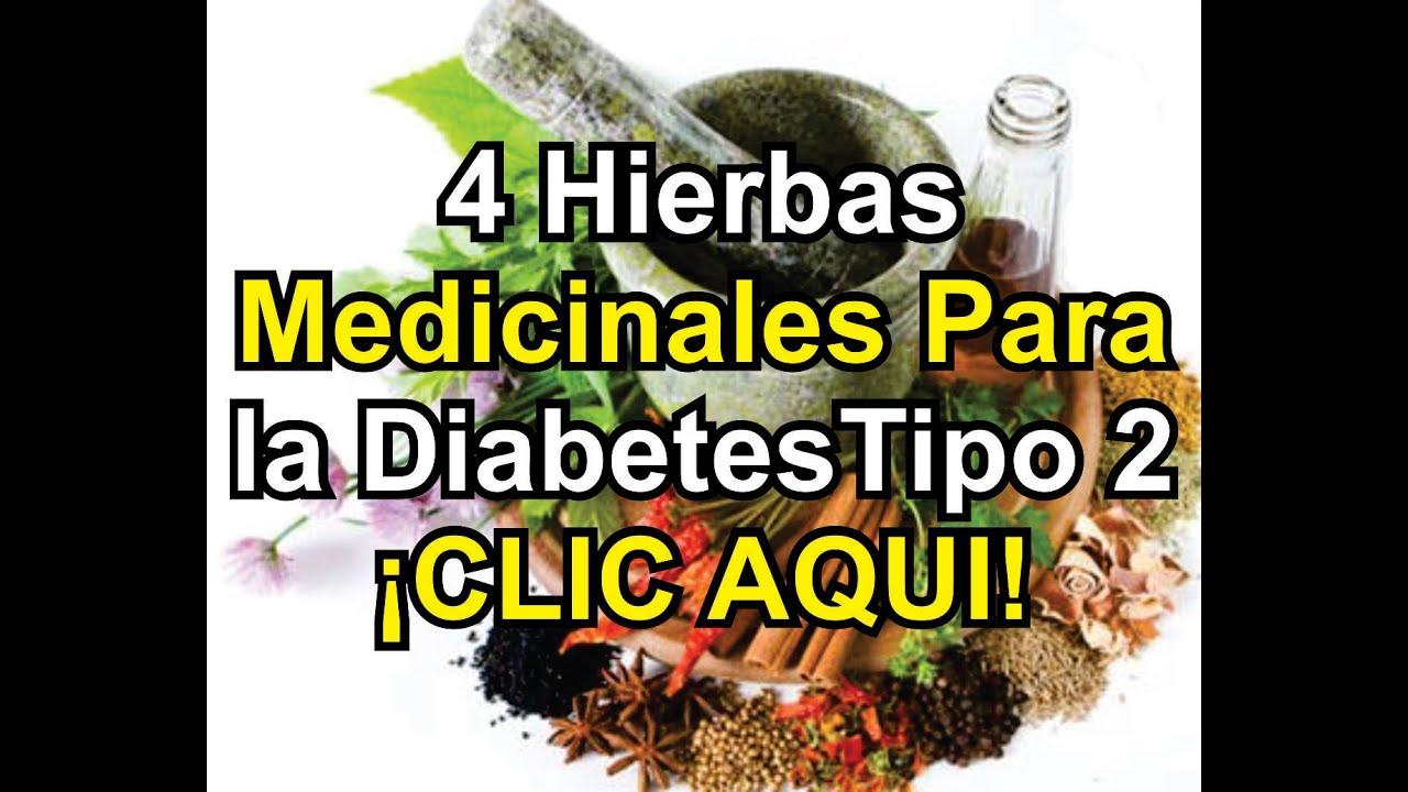 Revertir la Diabetes: 4 Hierbas Medicinales Para la