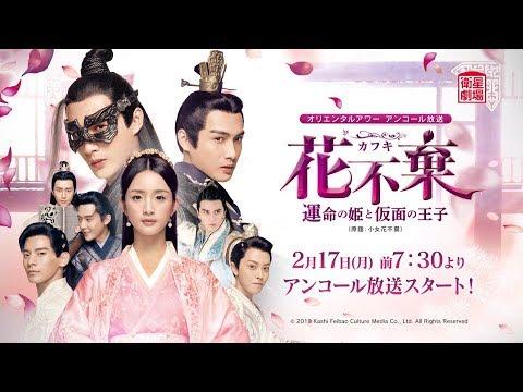 中国 ドラマ 放送 予定 2020