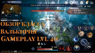Black Desert Mobile - Обзор класса Валькирия. Gameplay lvl 40. 80 монет гоблина!!!
