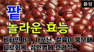 [#팥효과] 팥의 놀라운 효능 10가지 (비타민 B1,…