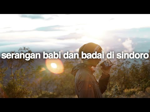 Bau Tanah (Gunung Sindoro, Jawa Tengah)