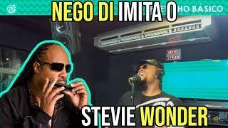 NEGO DI IMITA O STEVIE WONDER