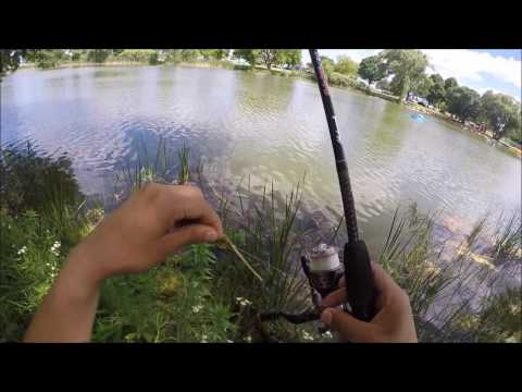 Veterans park pond 6-27-16