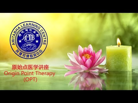 医学讲座 - Origin Point Therapy OPT