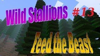 Wild Stallions - Feed the Beast e13 Plop Plop, Fizz Fizz - Minecraft