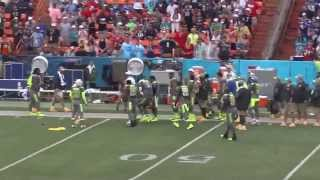 Video There's Always One - Katrina Torres on the field at the 2014 NFL Pro Bowl! download MP3, 3GP, MP4, WEBM, AVI, FLV April 2018