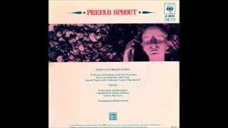 Watch Prefab Sprout Diana video