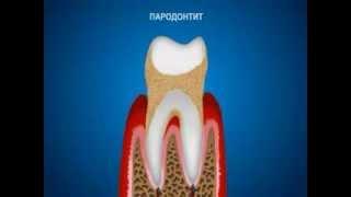 видео стоматология в купчино