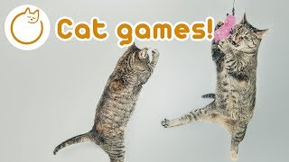 Games for Cats: 1 Hour of Cat Games Fun Games to play with your Kitten!