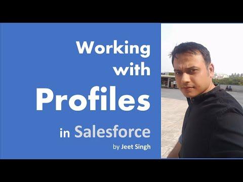 Understanding Profiles in Salesforce