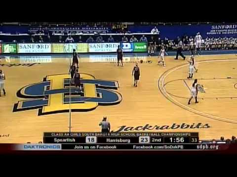 2014 State AA Girls Basketball Tournament - Game 5
