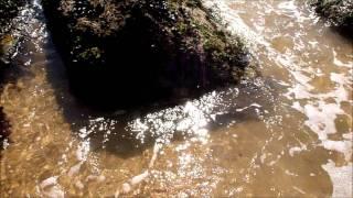 Luciole - Je t'oublierai - Unofficial clip
