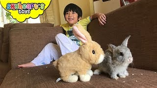 Skyheart got his first PET RABBIT - Playtime with pet rabbits for kids toys and bunny children