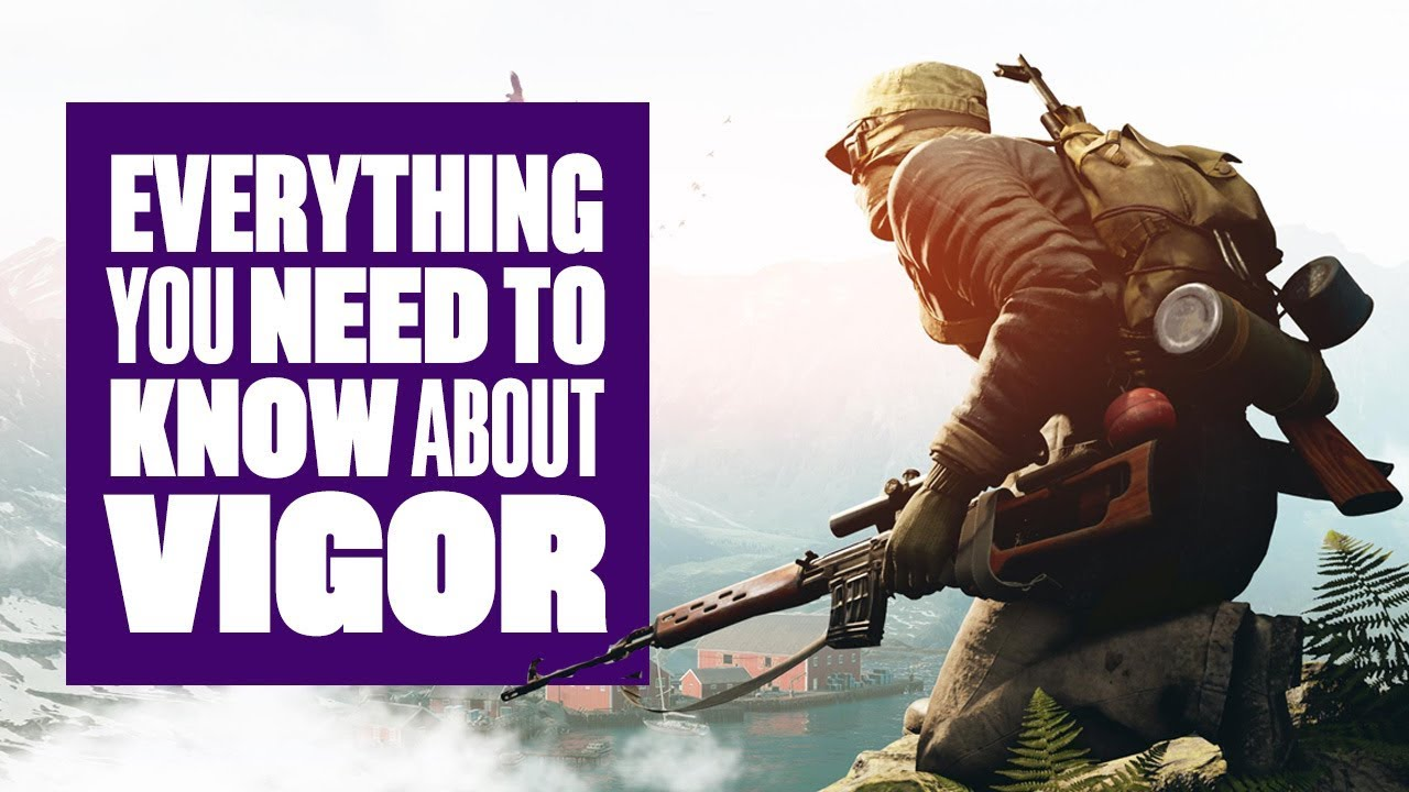 Everything You Need To Know About Vigor