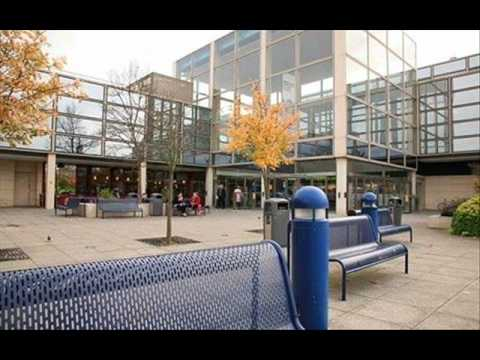 You've Never Seen Anything Like It - The Central Milton Keynes Shopping Song