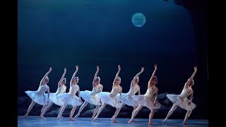 My First Ballet: Swan Lake – Rothbart and swans excerpt | English National Ballet