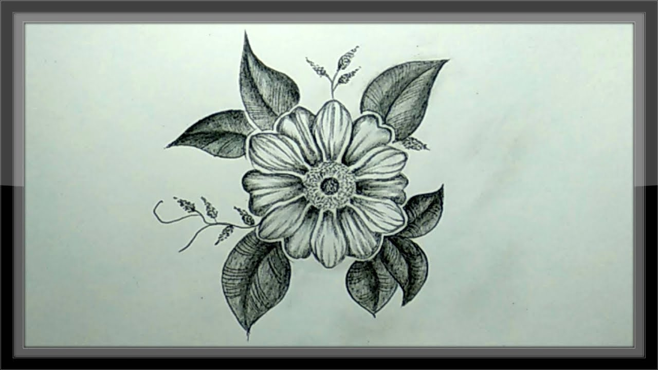 Pencil Drawing , How To Draw A Beautiful Flower Easy