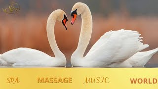 RELAXING MUSIC ,SPA MEDITATION MUSIC, CALMING  SLEEP  STRESS RELIEF FOR WORK STUDY BACKGROUND MUSIC