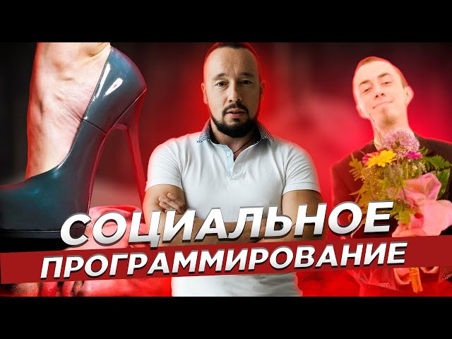 Социальное Программирование / Какие Парни Нравятся Девушкам