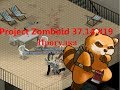 Project Zomboid 37.14 #19 Прогулка