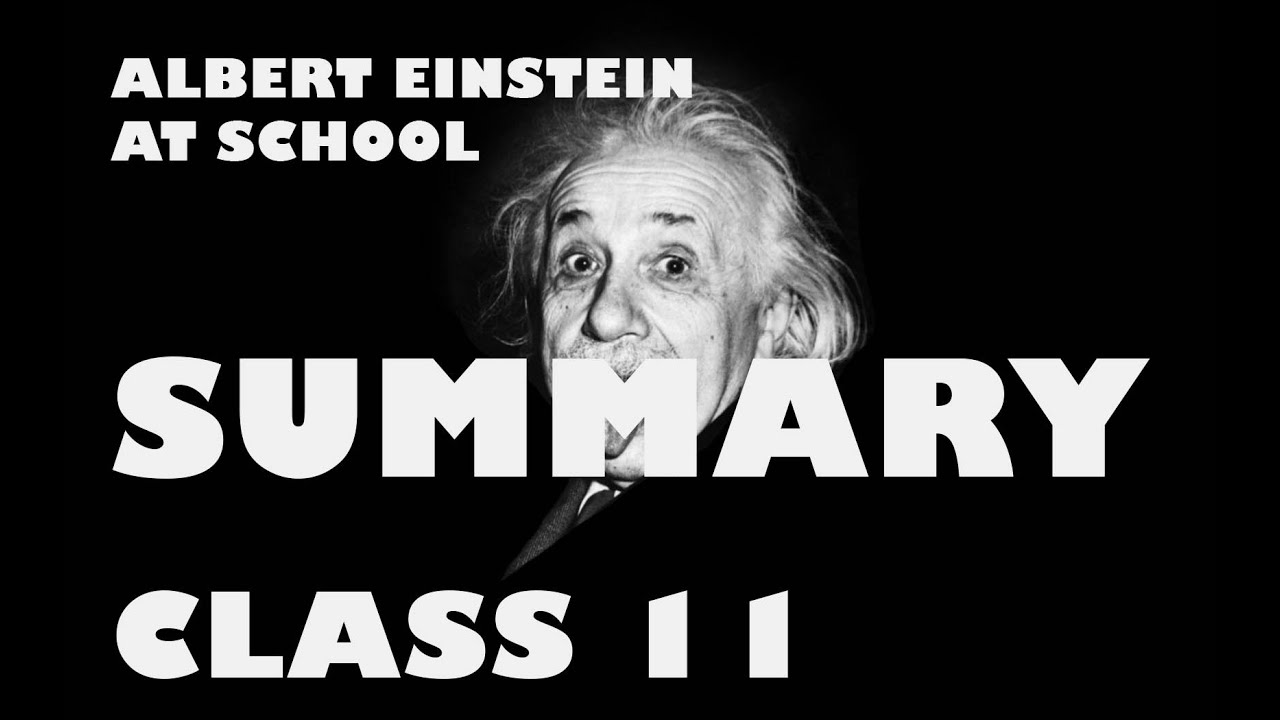 albert einstein at school by patrick pringle hindi summary