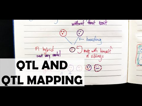 QTL And QTL Mapping