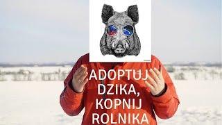 ADOPTUJ DZIKA, KOPNIJ ROLNIKA! (ASF)