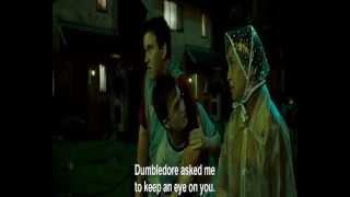 Гарри Поттер и Орден Феникса promt