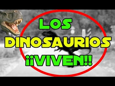 ¡Dinosaurios y Dragones Viven!!Timo  Darwin  Evolución