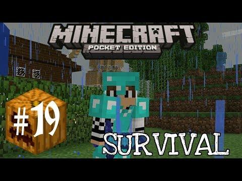 ternak-babi,-langsung-kawin!!!!!---minecraft-pe-survival-#19